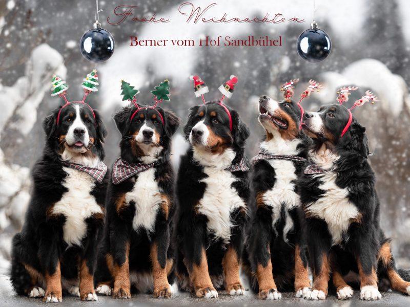 Christmas Foto_2020