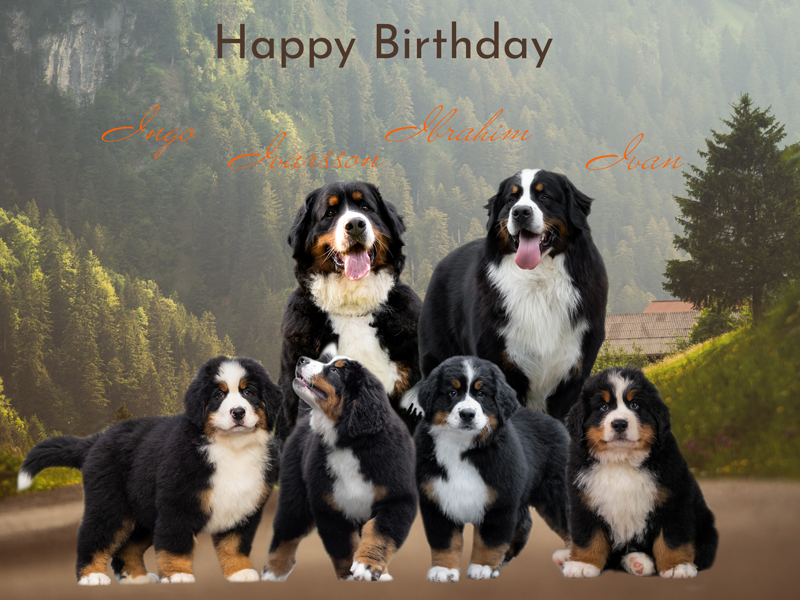 Read more about the article Happy Birthday I-Wurf